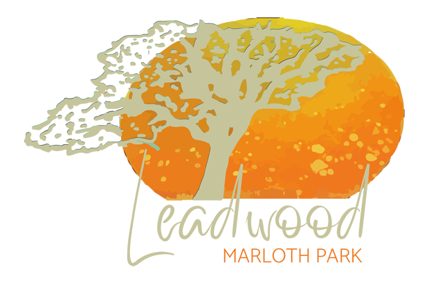Leadwood Marloth Logo