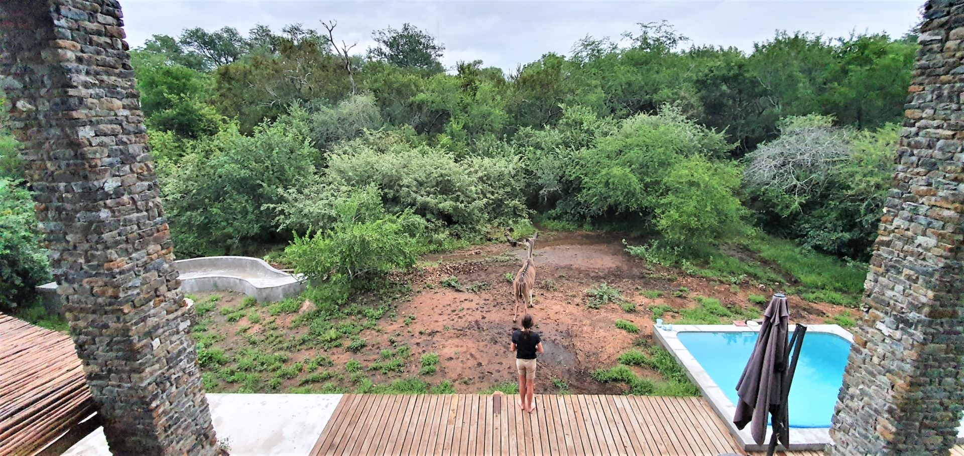Leadwood Self Catering Guesthouse in Marloth Park, Mpumalanga, South Africa
