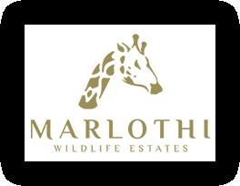 Marlothi Wildlife Estates - Estates Agency in Marloth Park